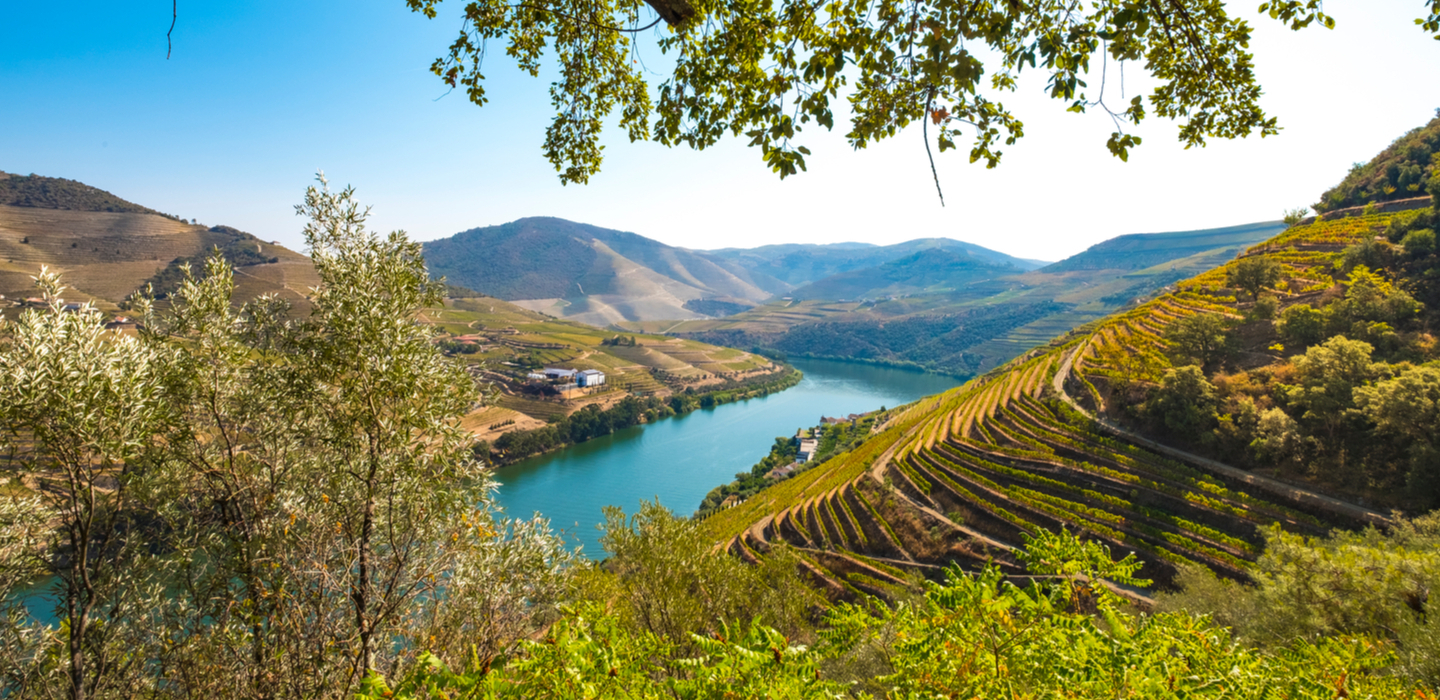 The Magnificent Douro Valley