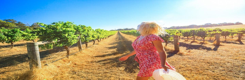 Exploring The Hunter Valley Shutterstock 1024553452